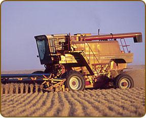 Grain Marketing Plans by Ag Watch